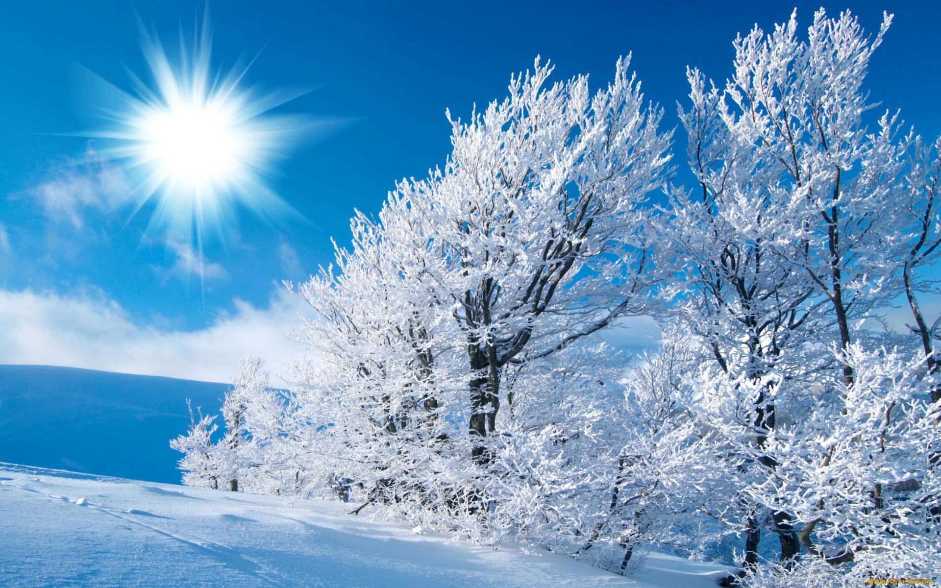 врачом красивые картинки для рабочего стола зима на весь экран помощью